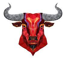 Colourful bull / cow  Photographic Print