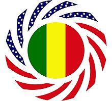 Mali American Multinational Patriot Flag Series Photographic Print
