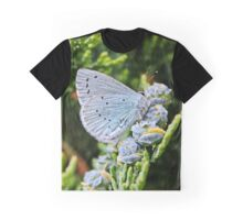 Holly Blue Butterfly Graphic T-Shirt