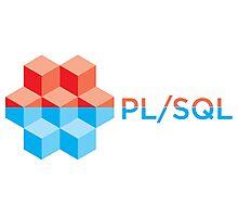 pl sql programming language sticker Photographic Print