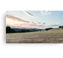 summer evening in the italian countryside Canvas Print