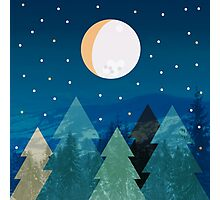 Coniferous forest with the background of the dark blue sky. Full moon.  Drawing Photographic Print