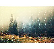 Mountain wildlife landscape. Coniferous forest in the mist. Spring, soft hipster colors. Colorful tiny triangles as a background pattern Photographic Print