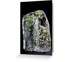 Ice Sculpture Series Greeting Card