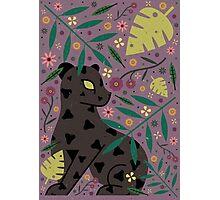 Black Jaguar Cub Photographic Print