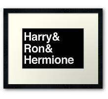 Harry Potter - Harry Ron Hermione Framed Print