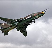 Sukhoi Su-22M-4 Fitter-K Red 9616 by Andrew Harker