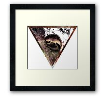 Galactic Sloth Framed Print