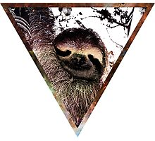 Galactic Sloth Photographic Print