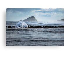 Big ocean waves and spray Canvas Print