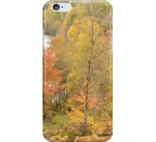 Autumn in the Highlands iPhone Case/Skin