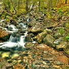 mountain stream by Stephen Frost
