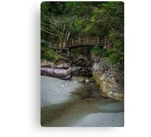 Foot bridge at Tofino Canvas Print