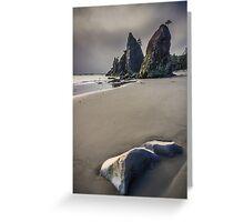Seastacks at Rialto Beach Greeting Card