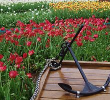 Tulips And Anchor by lezvee