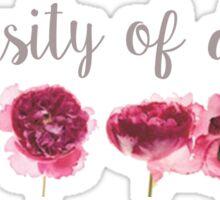 University Denver Sticker
