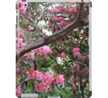 Sunshine and Pink iPad Case/Skin