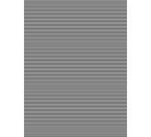 Stipes Photographic Print