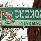 Route 66 - Chenoa Pharmacy by Frank Romeo