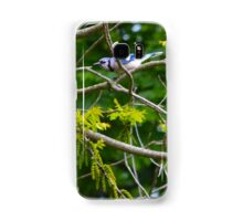 Cyanocitta Cristata - Blue Jays | Center Moriches, New York Samsung Galaxy Case/Skin