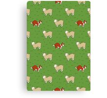 Come Bye - Red dog and white sheep Canvas Print
