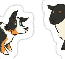 Come Bye - Tri-color dog and black sheep Sticker