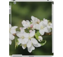 Crab Apple Blossoms iPad Case/Skin