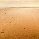 Morecambe Bay by Stephen Frost