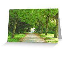 Willow Walk Greeting Card