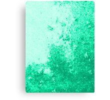 Earth Sweat Design (Lush Meadow Color) Canvas Print