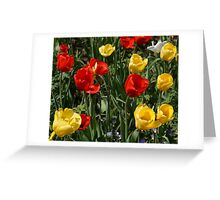 Tulip Party Greeting Card