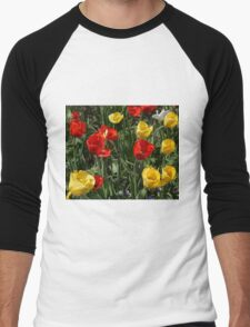 Tulip Party Men's Baseball ¾ T-Shirt