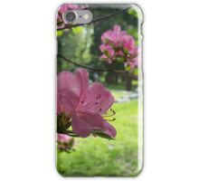 Pink Flowers in the Cemetery iPhone Case/Skin