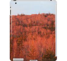 orange forest iPad Case/Skin