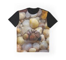 Fist Shaped Seashells And Pebbles | East Marion, New York  Graphic T-Shirt