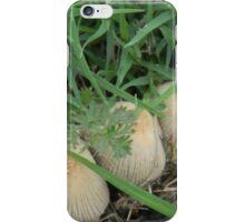 Sidewalk Mushrooms iPhone Case/Skin
