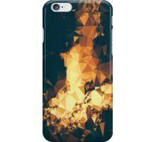 Catching Fire iPhone Case/Skin