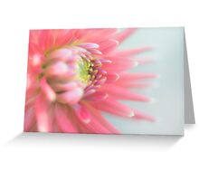 Araluen Fire Dahlia Greeting Card