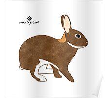 Chestnut Agouti Rabbit Poster