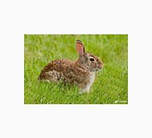 Rabbit in a Grassy Meadow Unisex T-Shirt
