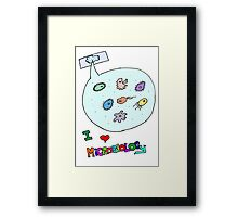 I love microbiology- school style Framed Print