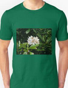 Sunkissed Rhododendron Blossom - Keukenhof Gardens T-Shirt