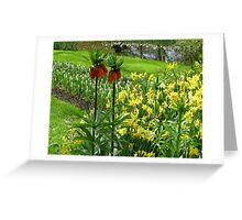 Crown Imperials - Keukenhof Gardens Greeting Card