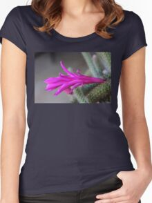 Rattail Cactus flower Women's Fitted Scoop T-Shirt
