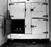 Morgue- TB Asylum by kailani carlson