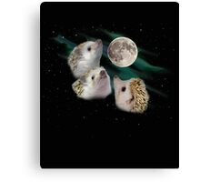 Three Hedgehog Moon Canvas Print