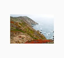 Colorful Cliffs at Point Reyes Unisex T-Shirt