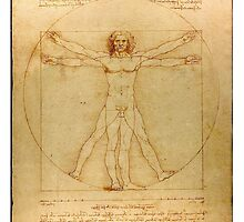 Leonardo's Vitruvian Man by Jeff East