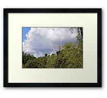 Park scenery with trees tops and cloudy sky with soap bubbles. Framed Print