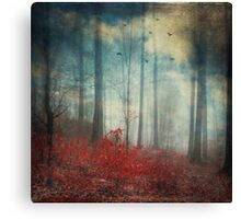 Open Woodland Dreams Canvas Print